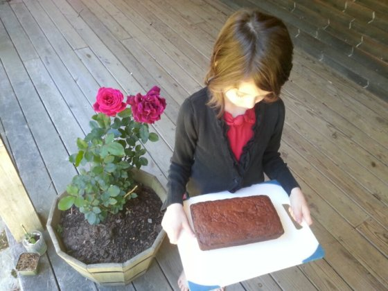 Banana Bread, Lincoln Roses, and Molly, the best-smelling of my children today